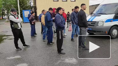 Около 100 мигрантов задержали во время рейдов на рынках Петербурга