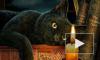 Что и почему нельзя делать: Топ-10 суеверий и их логических объяснений