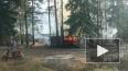 В поселке Советский Выборгского района сгорели сараи ...