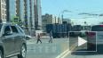 Мусоровоз въехал в рейсовый автобус с пассажирами ...