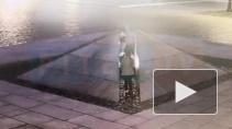 В полицию доставлены еще две участницы инцидента у Вечного огня в Кронштадте