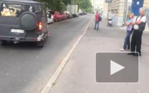 """В Колпино водитель черной """"ГАЗ"""" сбил 8-летнюю девочку"""