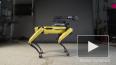 Boston Dynamics опубликовал видео зажигательного танца р...