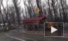 Жуткое видео из Ростова-на-Дону: дерево упало на КАМАЗ и убило двух человек