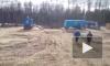 Ямал: Разъяренный медведь выбежал из леса и напал на рабочих