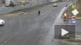 Водитель иномарки наехал на пожилую женщину в Колпино