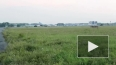 Экипаж разбившегося в Хабаровском крае Ту-95 успел ...