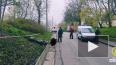 В Красном Селе в ДТП погиб водитель Yamaha