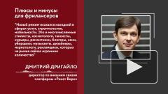Эксперт оценил рост числа самозанятых в Петербурге