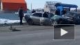 Жуткие кадры из Алтая: трассу не поделили 4 автомобиля