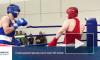 Более 200 молодых боксеров приехали на соревнования в Выборг