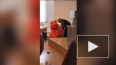 Видео: студент пришел в костюме котика ради зачета