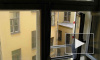 Власти Петербурга помогут семье трехлетнего ребенка, выпавшего из окна