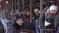 Дыхание Петербурга: главные новости уходящей недели