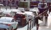 На Суворовском проспекте троллейбус задом сбил пенсионерку