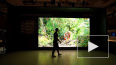 Компания Samsung представила гигантский телевизор ...