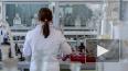 Количество заболевших коронавирусом в Петербурге составл...