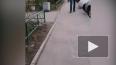 Видео: в Шушарах трое с ножом напали на прохожих
