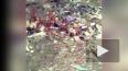 Видео стихийной свалки в центре Владикавказа повергло ...