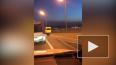 Видео: во Владивостоке несколько человек прикинулись ...