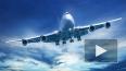 В Челябинске экстренно сел самолет с психически больной ...