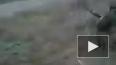 Появилось видео ликвидации бандгруппы в Астрахани