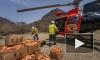 В Австралии с воздуха скинули  тонны моркови и картофеля для кенгуру