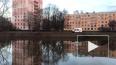 Забавное видео: в Кировском районе мужчина переплыл ...
