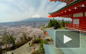 Россия предложила Японии отказаться от виз