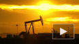 """В """"Нафтогазе"""" обосновали предлагаемые Москве цены ..."""