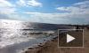 Во время шторма в Финском заливе спасли семью на тонувшем катере