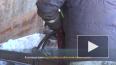 Видео: в Выборге прошли работы по утилизации пассажирского ...