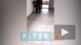 Видео: вПетербурге охранник института ударил об пол бер...
