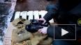 В Петербурге электронику и ботинки пытались выдать ...