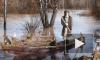 Деда Мазая с зайцами спасли от наводнения в Комсомольске-на-Амуре