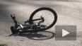 Дальнобойщик переехал американского велогонщика
