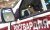 В Волгограде гражданин Эфиопии матерился, покусал бойца Росгвардии и помял служебный автомобиль