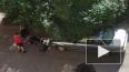 В доме на Херсонской улице собаки десять дней провели ...