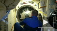 NASA не хочет допускать отсутствия американских астронав ...