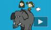 Любопытки-4: Трём спинку слону, красим глаза и ногти!