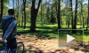 В Шуваловском парке велосипедист сбил насмерть трехлетнего малыша