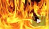 В Петербурге эвакуируют сотрудников горящего «Ленформаша»