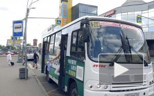 Петербуржцы обеспокоены отменой маршрутных автобусов в 2020 году