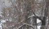 Петербург и Ленобласть накроют обильные снегопады и метель