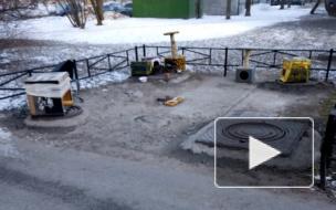 Во дворах Приморского района появились домики для бездомных животных