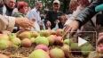 Яблочный спас в 2014 году отпразднуют погоней за мухами,...