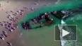 Российский корабль - призрак прибило к берегам Калифорни...