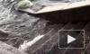 Поднявшаяся вода в Неве затопила спуски к набережным