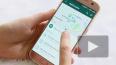 WhatsApp собрался судиться с пользователями