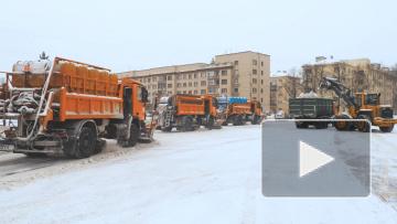 Чтобы праздник прошел без помех: кто обеспечивает порядок в Петербурге на Новый год